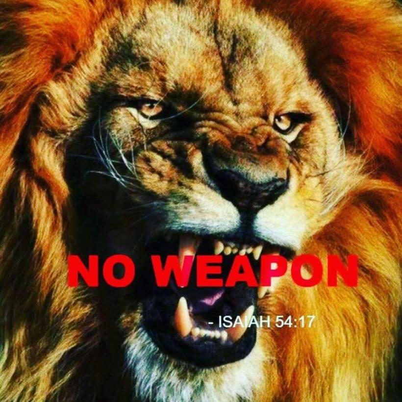 no wepon